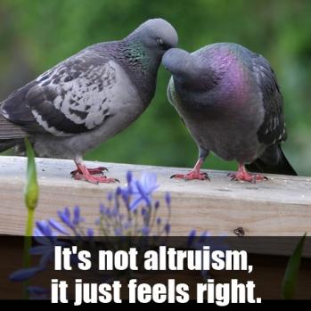 altruism2-meme