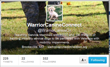 warriorcanine