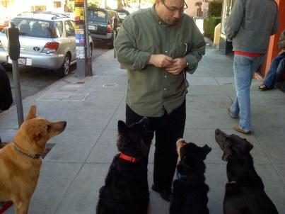 doggies and craig